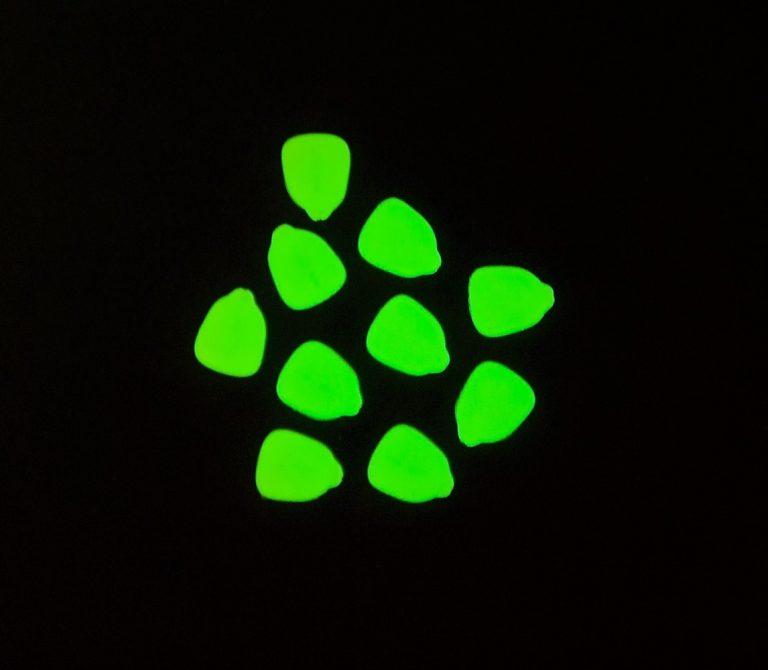 MAD CARP  Sztuczna Kukurydza Pływająca FLUO. Kolor  fluorescencyjny świecący. Wykonana z gumy najwyższej jakości (ENSOFT SX-300-10A-D2-000).   Sztuczna kukurydza pływająca, idealna do wszystkich metod gruntowych. Do złudzenia przypominająca naturalne ziarno kukurydzy. Idealnie wchłania i długo utrzymuje dipy , boostery , itp. . Przydatna wszędzie tam gdzie chcemy by nasza przynęta nie zniknęła w roślinności lub mule. Ponadto w celu ułatwienia zaczepu na włos posiada mikro otwór i wgłębienie dla stoperka . Najlepsze efekty daje gdy się ją zadipuje i zaprezentuje na haczyku razem z innymi , również naturalnymi przynętami. 10 sztuk w opakowaniu.